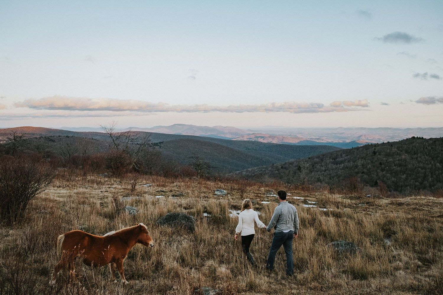 Field Wild Horses Engagement Session