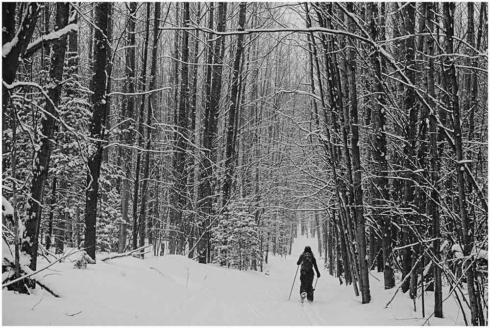 Cross Country Skiing VASA Trails Traverse City