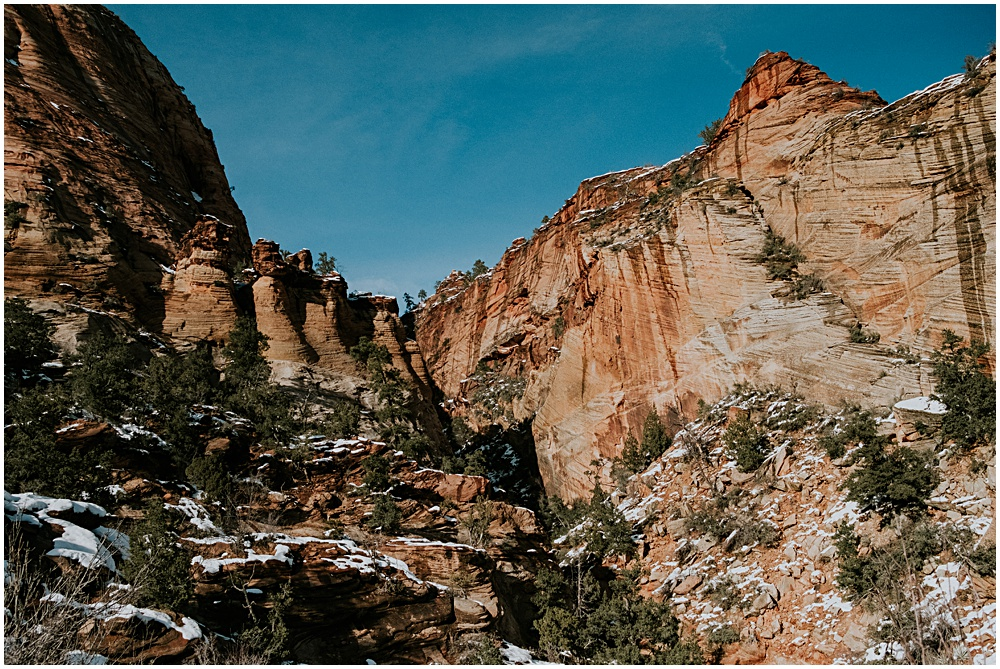 Snowy Zion National Park