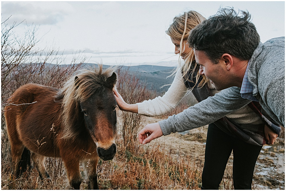 Engagement Session in Grayson Highlands