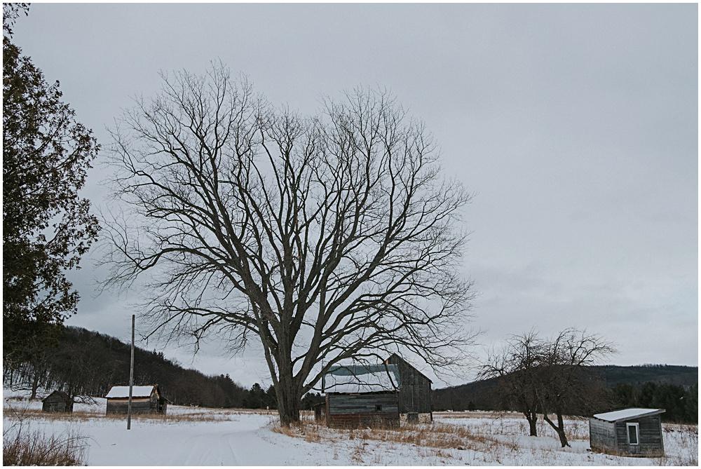 Historic Barns Leelanau County
