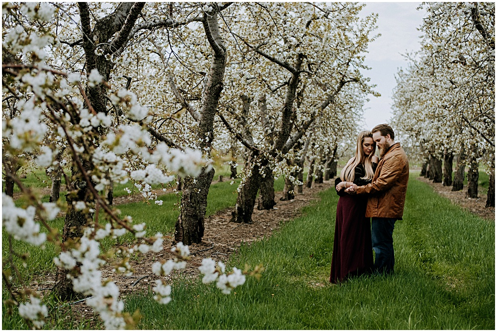 Traverse City Engagement Old Mission Cherry Orchard