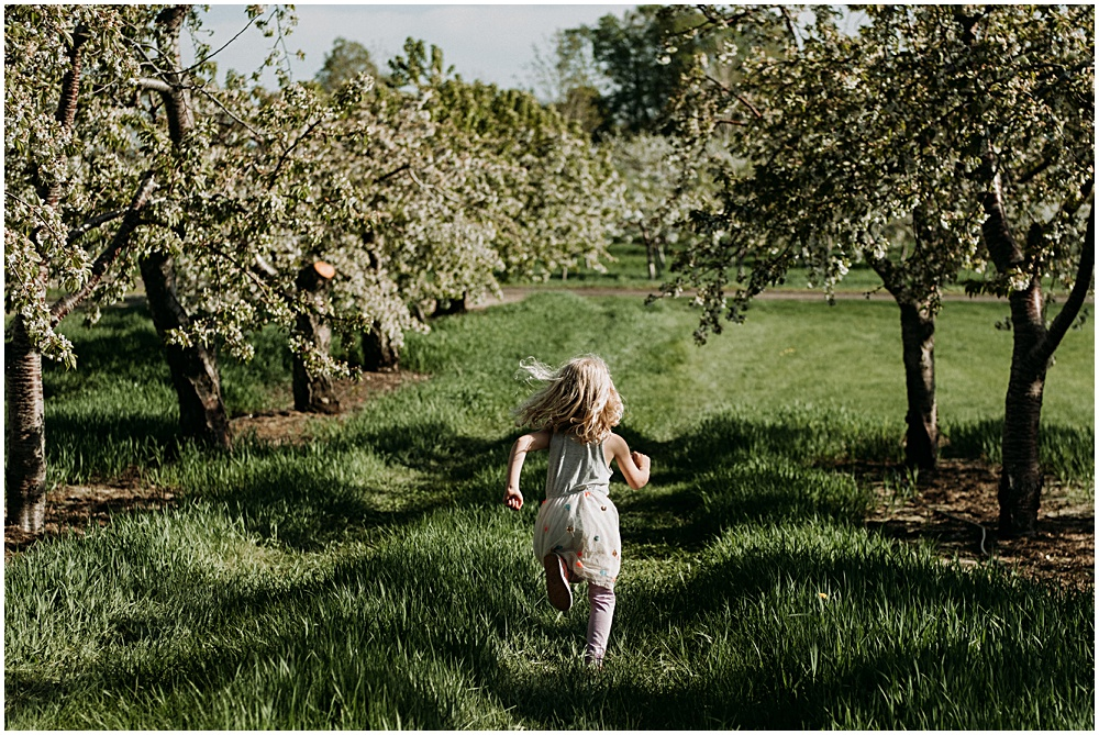 May Cherry Orchards Old Mission Family Photographer