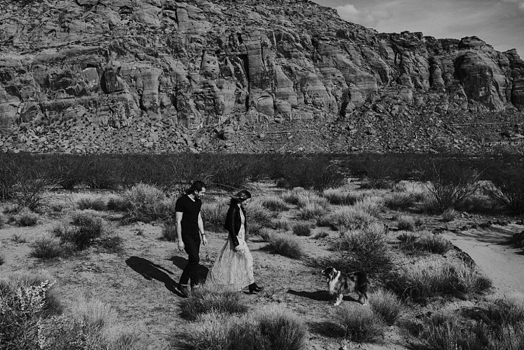 Snow Canyon Engagement