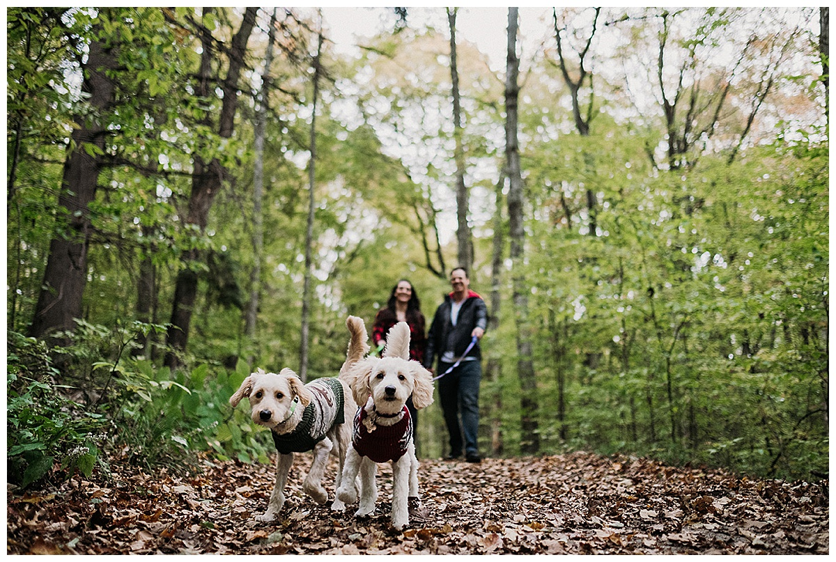 Dogs Northern Michigan Couples Session