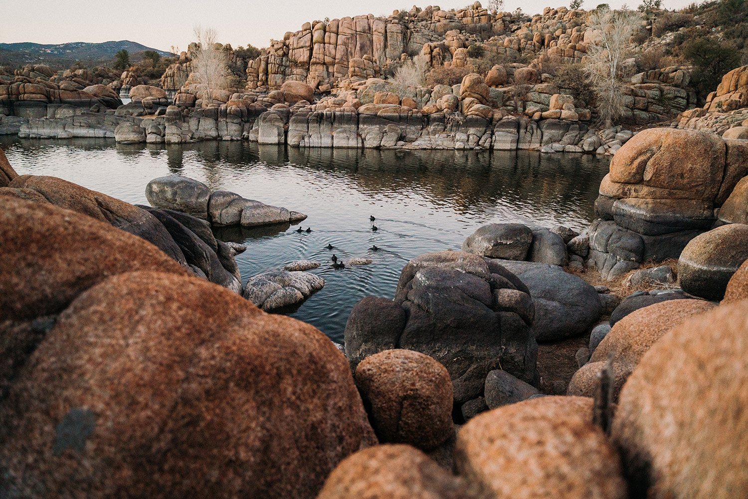 Watson Lake Prescott Arizona by Nicole Geri